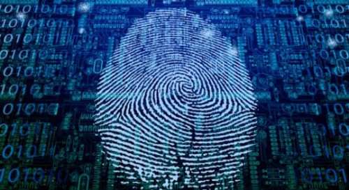 The Changing Role of the Professional CSI